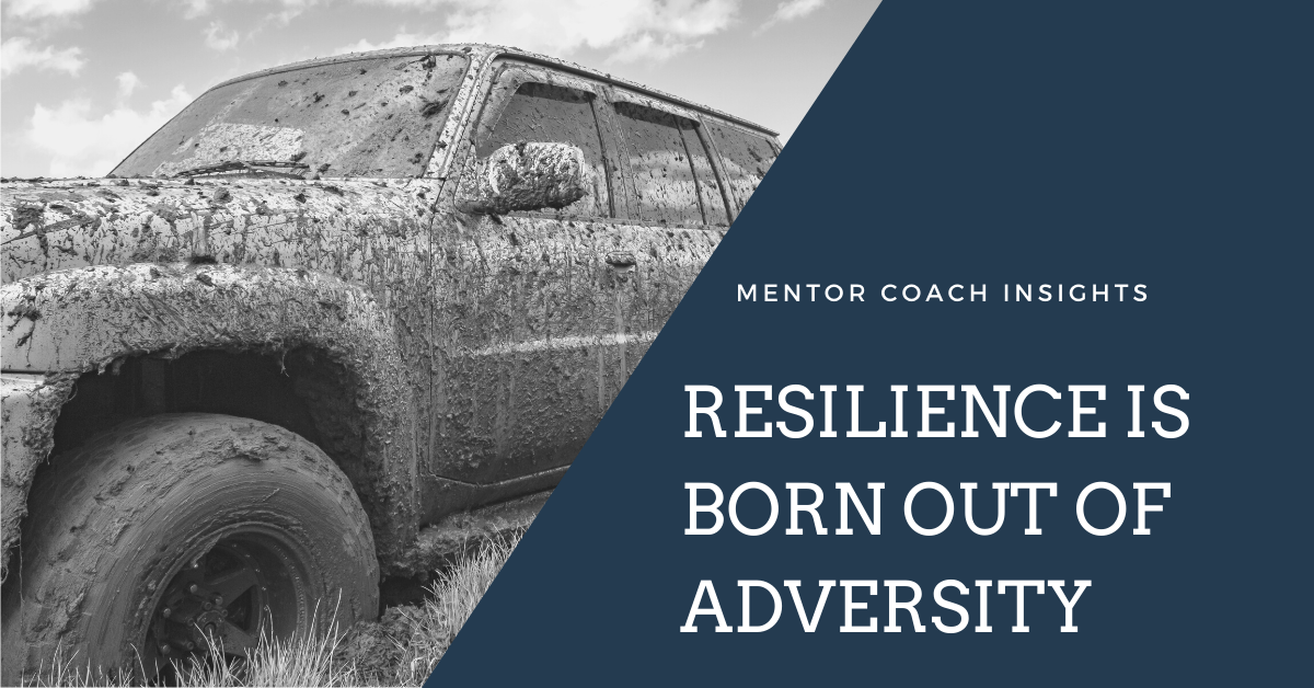 Face Adversity in Business